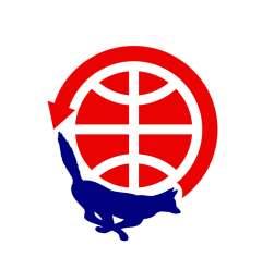 Amsat-NA FOX Logo