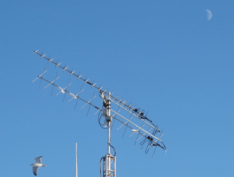Antenne-seagull